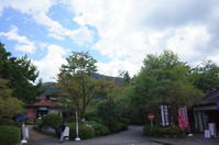 駆け足で巡る箱根 その5~箱根湿生花園 - 「趣味はウォーキングでは無い」