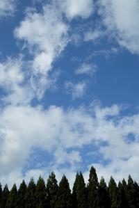 20日は、思子淵神社の秋祭り・・・ススキの原とアサギマダラ - 朽木小川より 「itiのデジカメ日記」 高島市の奥山・針畑郷からフォトエッセイ