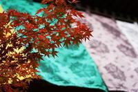 「紅葉までもう少し-柿と共に永観堂から天授庵へ-」 - ほぼ京都人の密やかな眺め