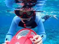 最高の透明度☆ - 沖縄ダイビング&フィッシング DSA ブログ