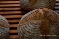 あこ天然酵母でカンパーニュ&ロールパン - 酵母の庭