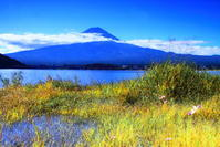 30年9月の富士(21)河口湖岸辺からの富士 - 富士への散歩道 ~撮影記~