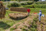 脱穀と籾摺り - デジカメ写真集