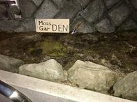 世界第2位の実力。(1807再訪)──「傳」@外苑前 - Welcome to Koro's Garden!