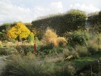 パリの植物園 <大都会のオアシス> - フランス Bons vivants des marais
