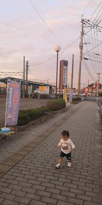 幸也の散歩 - 自分と家族の愛し方
