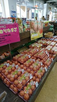 大洗まいわい市場    オレンジ玉子入荷しました😃 - わいわいまいわい-大洗まいわい市場公式ブログ