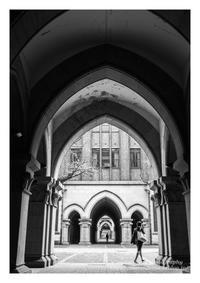キャンパス - ♉ mototaurus photography