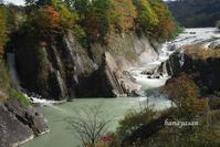 滝ノ上公園 - こもれびの森