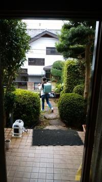 自己治癒力の高い子の食生活 - 日本でタイメシ ときどき ***