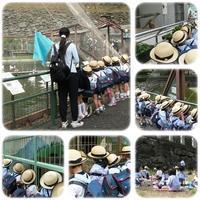 年中組遠足 - ひのくま幼稚園のブログ