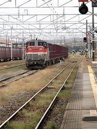 藤田八束の鉄道写真@青森のねぶた祭りと武者絵、貨物列車が東北本線を走る - 藤田八束の日記