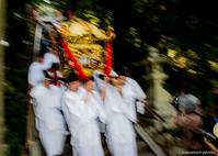 奇祭【塚原稲荷神社あばれみこし】#2 - kawanori-photo