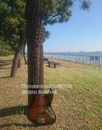 ベースギター - surftrippper サーフィンという名の旅