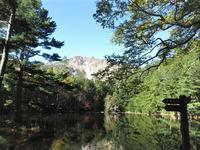 北八ヶ岳ミドリ池の氾濫Midori Pond in Northern Yatsugatake - やっぱり自然が好き