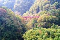 信州高山村の紅葉 - 気楽おっさんの蓼科偶感