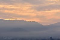 幻の朝@平城宮跡にて負けず嫌いがおりましたの記録 - 東大寺が大好き