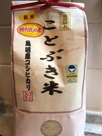 魚沼産コシヒカリでいくら丼 - 麹町行政法務事務所