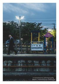 習性 - ♉ mototaurus photography