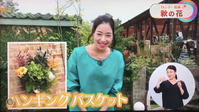 みどりさん出演ラッシュに紛れて - さにべるスタッフblog     -Sunny Day's Garden-