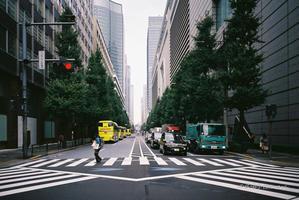 スクランブル交差点 - BobのCamera