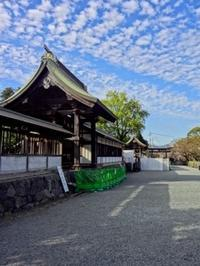 阿蘇神社 - ケセラセラ2♪