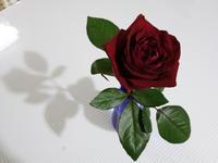 結婚記念日★陶芸クラブ - 月夜飛行船