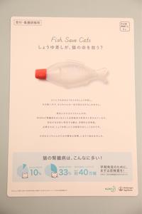 しょうゆ差し - 宮城県富谷市明石台  くさか動物病院ブログ