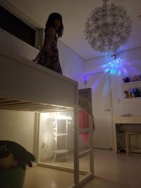 【IKEA】やっと魅力に気付いてくれた娘(ФωФ) - ねことおうち