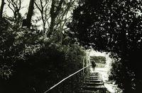 NEOPAN400PRESTO×Kodak XTOL(1+1.2)Leica mini3 - モノクロフィルム 現像とプリント 実例集