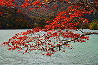 湖畔での秋 - 風の香に誘われて 風景のふぉと缶