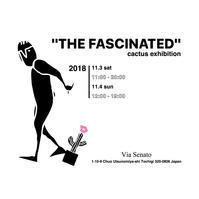 """""""THE FASCINATED"""" cactus exhibition  At Via Senato - メンズセレクトショップ Via Senato"""