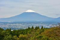 足柄峠から見る冠雪富士 - 風とこだま