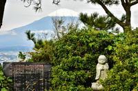足柄峠から見る冠雪富士2 - 風とこだま