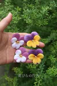 木綿の布花~小さなビオラ2色 - 布の花~花びらの行方 Ⅱ