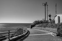 灯台へ - SCENE