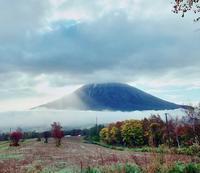 初冠雪 - green green Niseko ニセコの山で暮らす