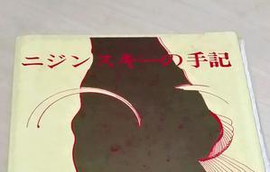 『ニジンスキーの手記・肉体と神』(市川雅・訳) ニジンスキーの生涯 覚え書き - 本読み虫さとこ・ぺらぺらうかうか堂(フィギュアスケート&映画も)