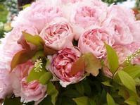 12月18日(火)開催「5周年&新刊本第1位記念パーティー」のお知らせ - 元木はるみのバラとハーブのある暮らし・Salon de Roses
