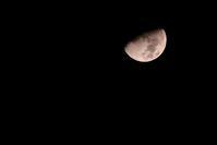 Half Moon and Mars - DAYS 〜ねこ☆ほし☆うみ☆はな☆日和