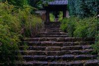 萩の寺~百毫寺(奈良市) - 鏡花水月