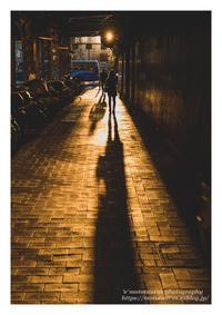 秋の夕日に - ♉ mototaurus photography