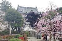 風猛山粉河寺(その1) - レトロな建物を訪ねて