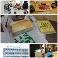 豊洲市場見学へ - 気ままな食いしん坊日記2
