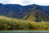 秋色に染まりて - 長い木の橋