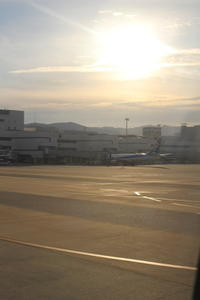 沖縄~阿嘉島&座間味島への旅①♪~≪阿嘉島編≫ - coto-ha  の ブログ。
