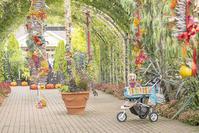 横浜イングリッシュガーデンのハロウィンハロウィン仮装のお客様 - エーデルワイスPhoto