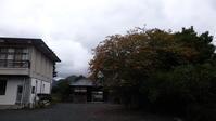 秋ですね!こんな日は - 萩セミナーハウスBLOG