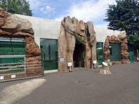 東武動物公園「ヒグマの森」OPEN! - 続々・動物園ありマス。
