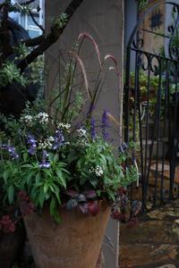 移り変わり - CHIROのお庭しごと